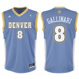 NBA DENVER GALLINARI