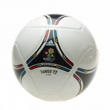 EURO 2012 GLIDER 